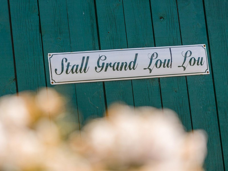 Stall-Grand-loulou
