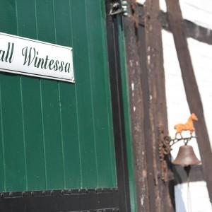 Stall Wintessa