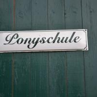 Ponychamp LC 2017 029