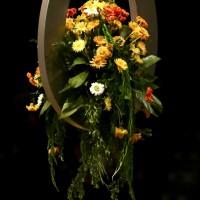 Ina Blumen-min